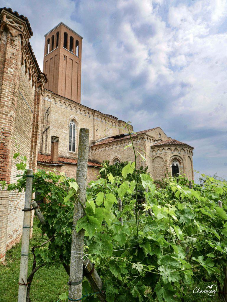 Venezia vigneto Chiesa Sant'Elena
