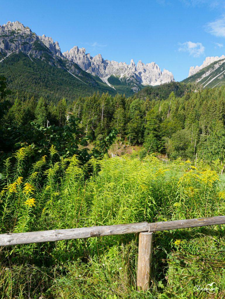 Forni di Sotto Alpi Friulane